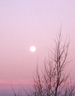 Sunrise Las Vegas, NM